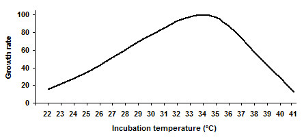 rate of fermentation The fermentation rate of the yeast can be calculated by measuring the volume of co 2 at the top of the tube and dividing it by the amount of time it took for that volume to form.